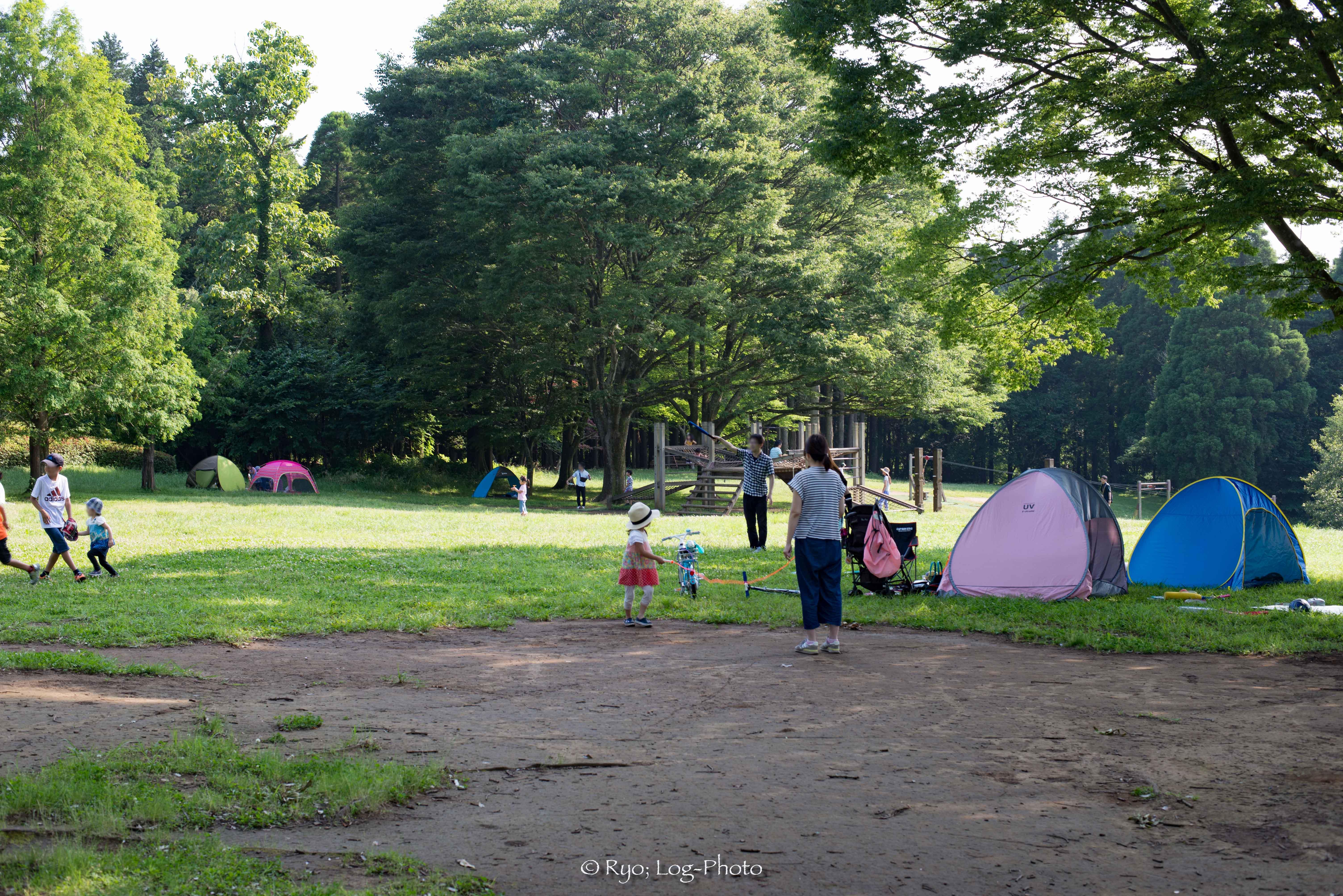 広場で遊ぶ家族がたくさん