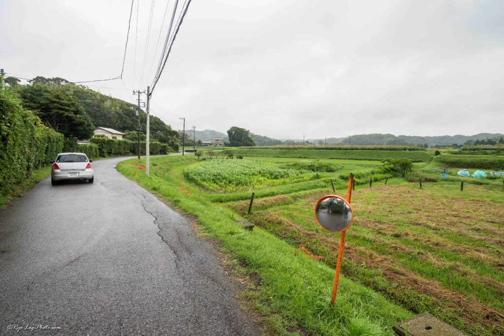 千葉県 富津 佐貫町 cafe グローブ 道