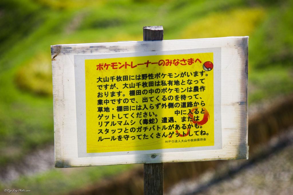 大山千枚田 ポケモン