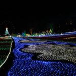 東京 ドイツ村 イルミネーション 2016