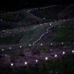 大山千枚田 ライトアップ