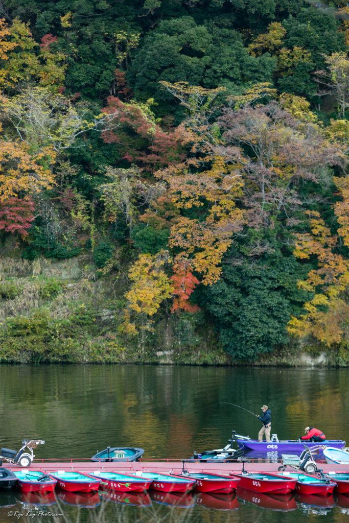 千葉 紅葉 亀山湖