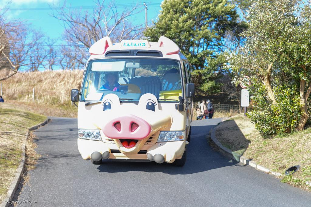 マザー牧場 バス