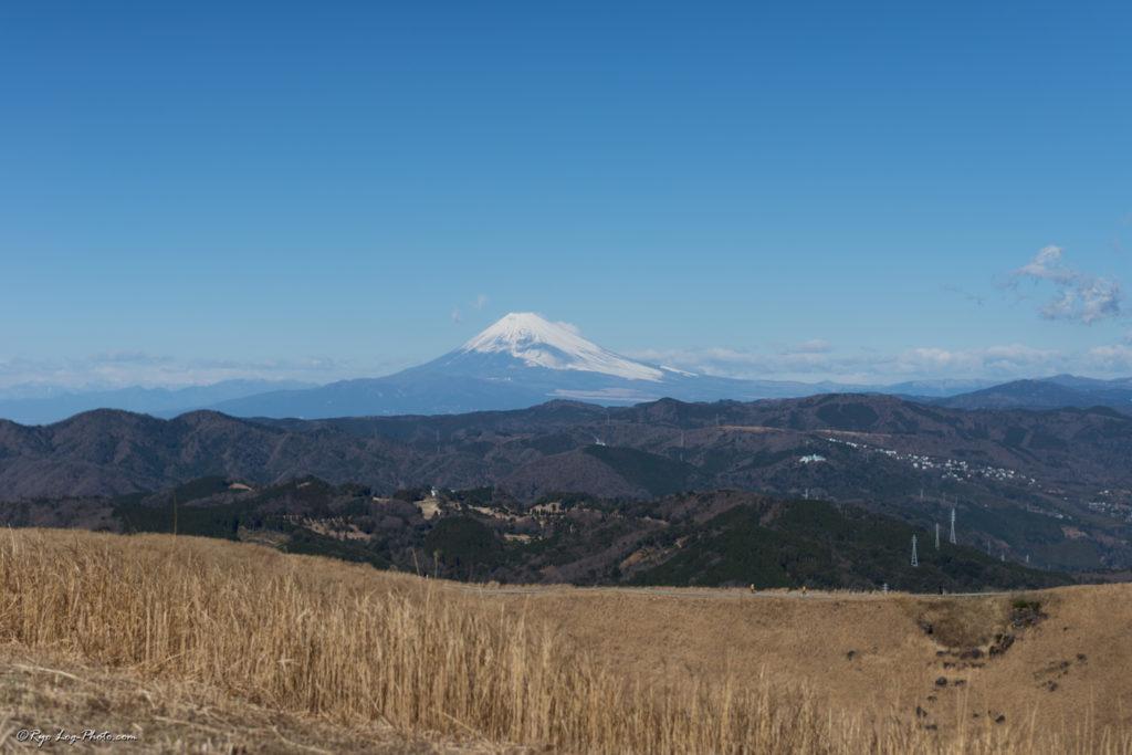 大室山 伊豆 観光 富士山