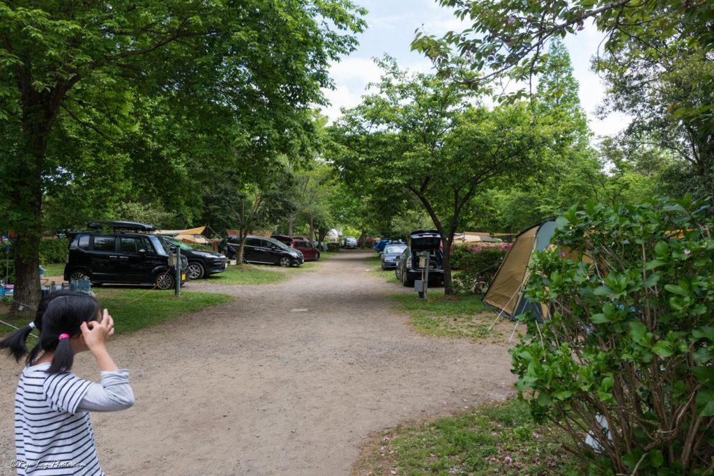 イレブンオートキャンプパーク 混雑