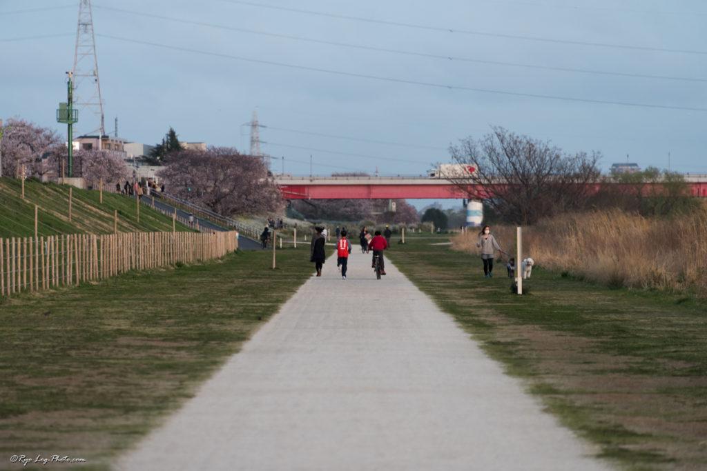 岸辺の散策路 散策 二子玉川