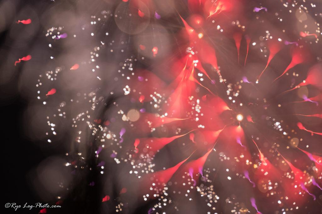 art_firework アート花火 ピント 撮影方法