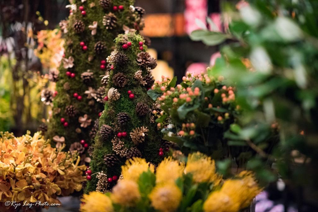 ニコライバーグマン クリスマス 6
