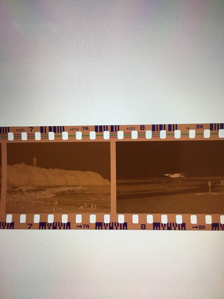 FUJICOLOER X-TRA 400 コード 作例 判別