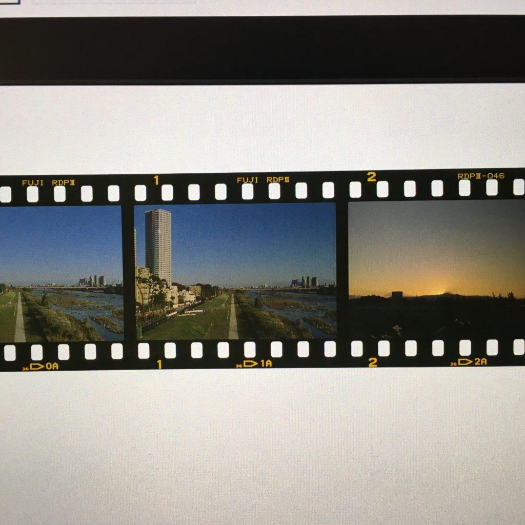フィルムカメラ provia 100F 判別 コード