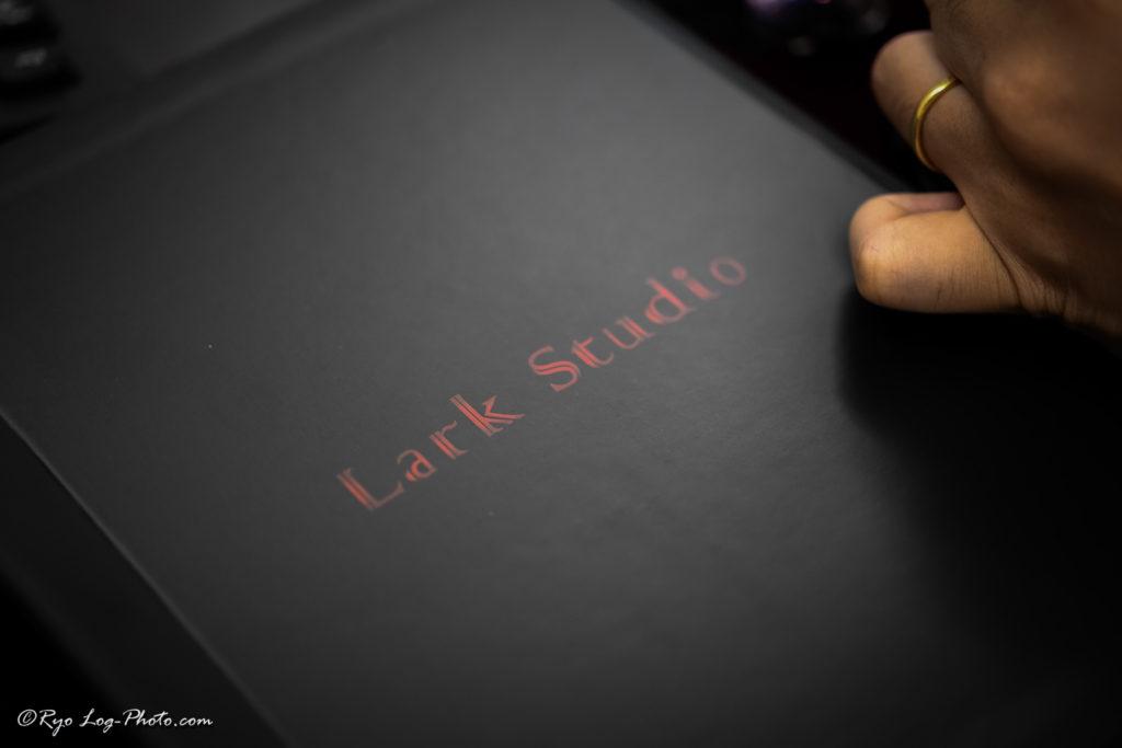 lark studio lsiv ラークスタジオ カスタムIEM