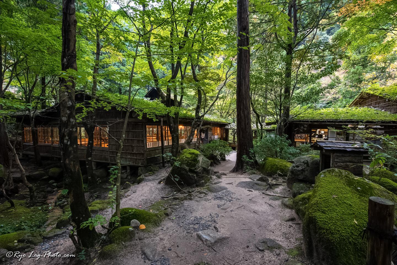 みたき園 鳥取 カフェ オシャレ