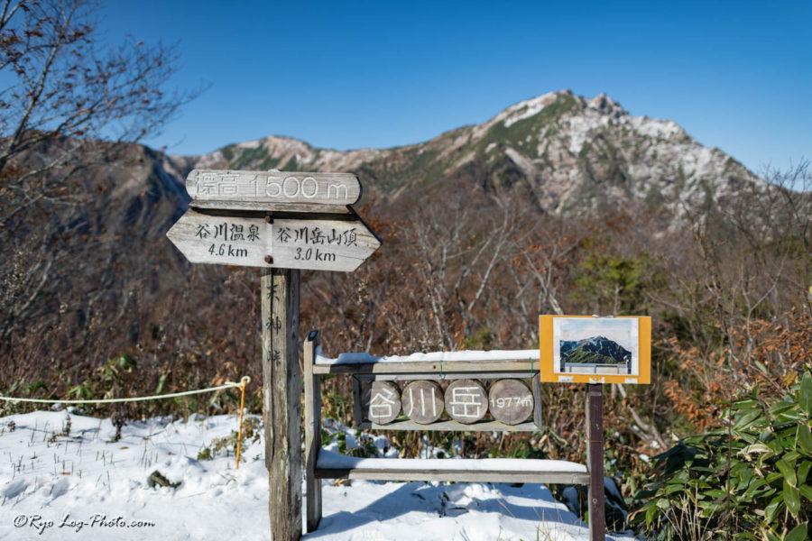 谷川岳 天神平 紅葉 登山