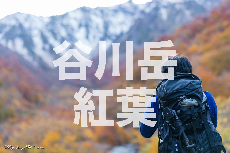 谷川岳 紅葉 ブログ