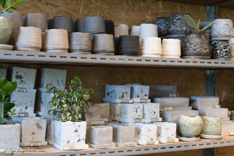 the farm chiba 千葉 鉢