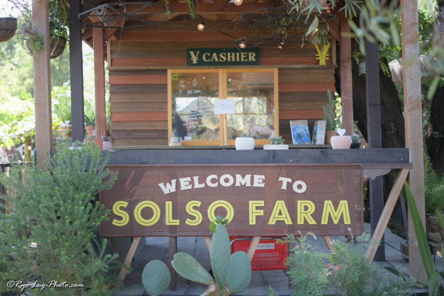SOLSO FARM ソルソファーム 植物園 デート おしゃれ