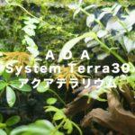 ada system terra30